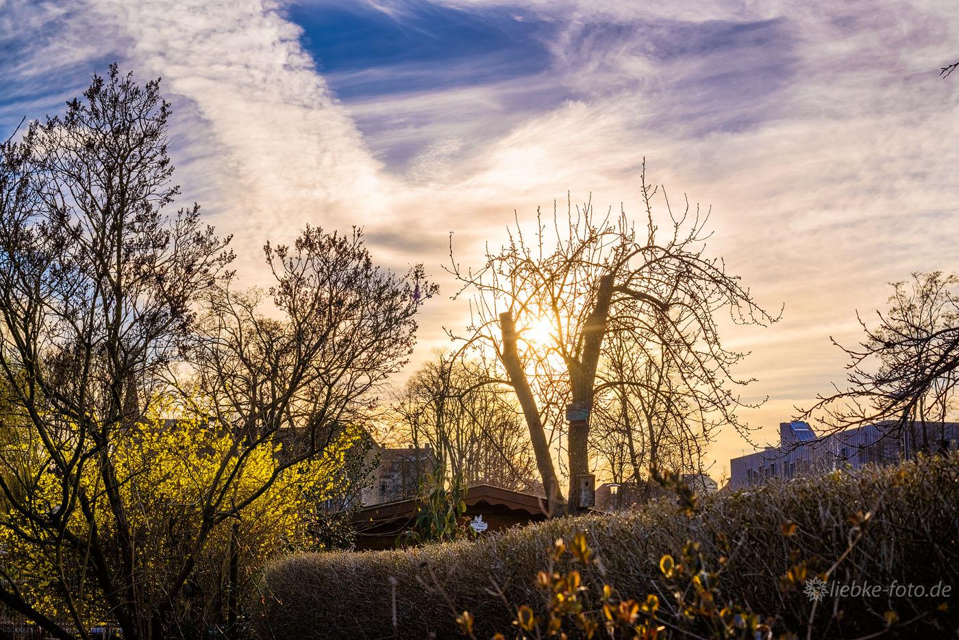 Frühlingabend in den Oranienburger Schrebergärten