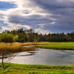 Die Havel bei Krewelin