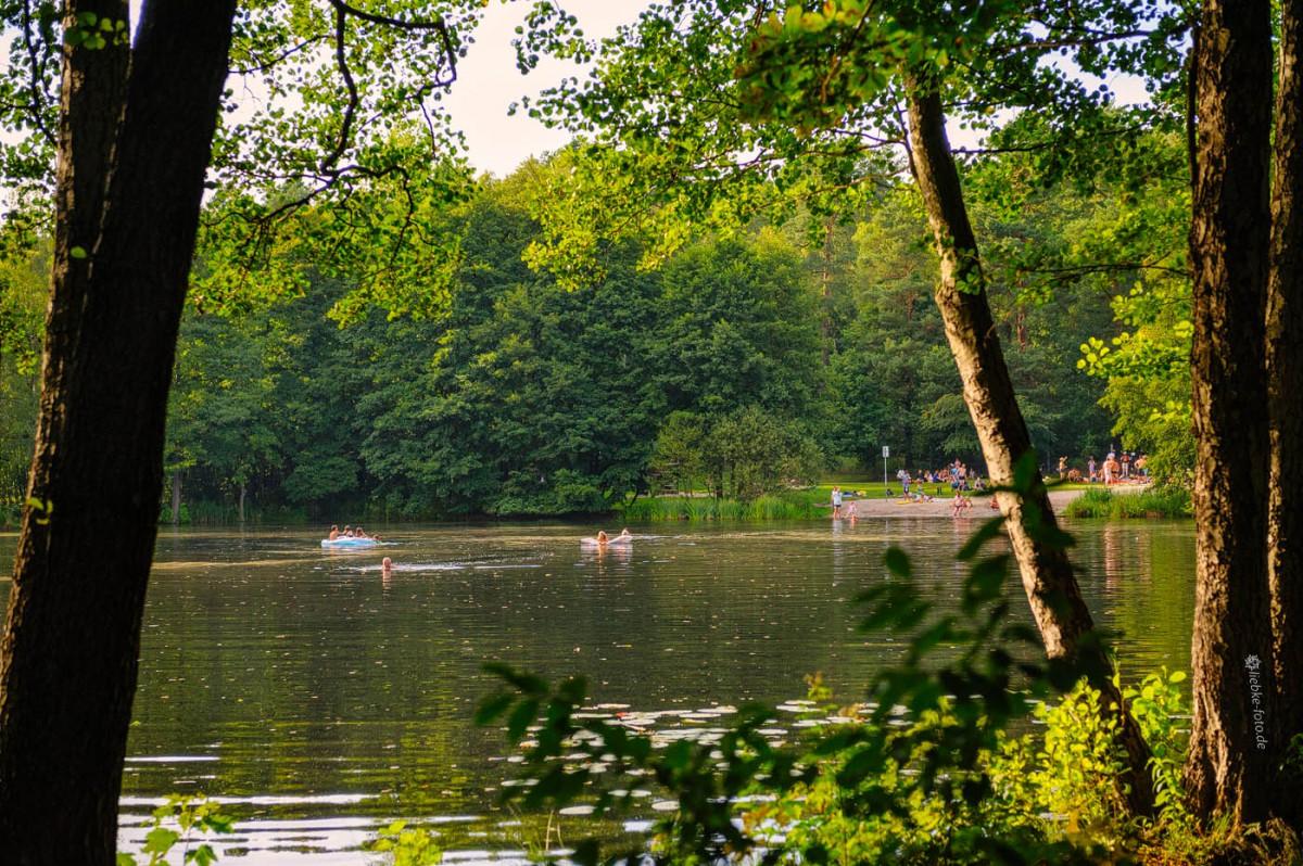 Das Briesetal im Naturpark Barnim - Badefreuden am Briesesee