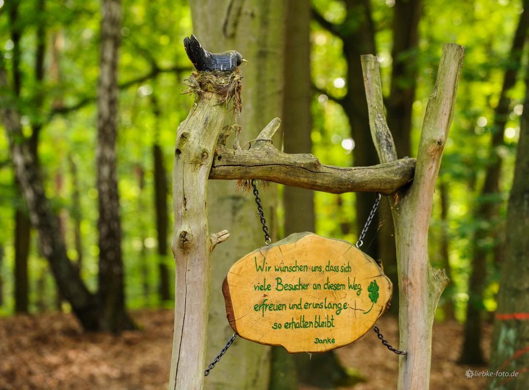 Das Briesetal im Naturpark Barnim - Gute Wünsche