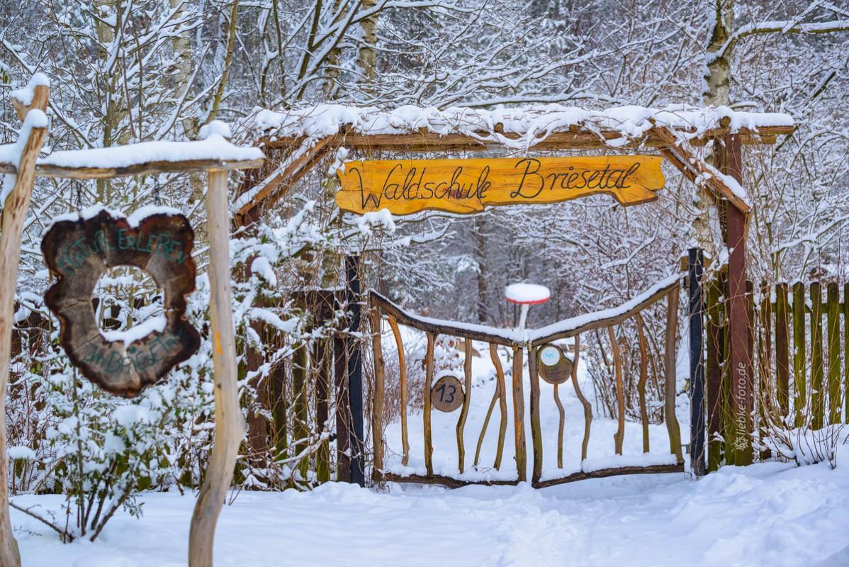 Die Waldschule in Briese im Winter