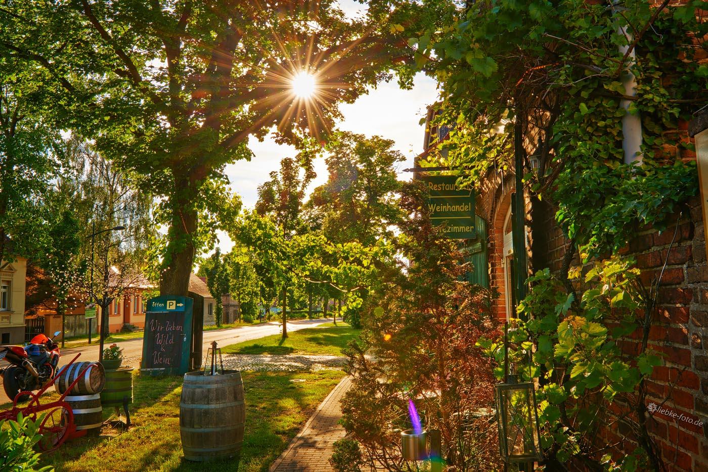 Spätnachmittag an der Weinschmiede Sommerfeld