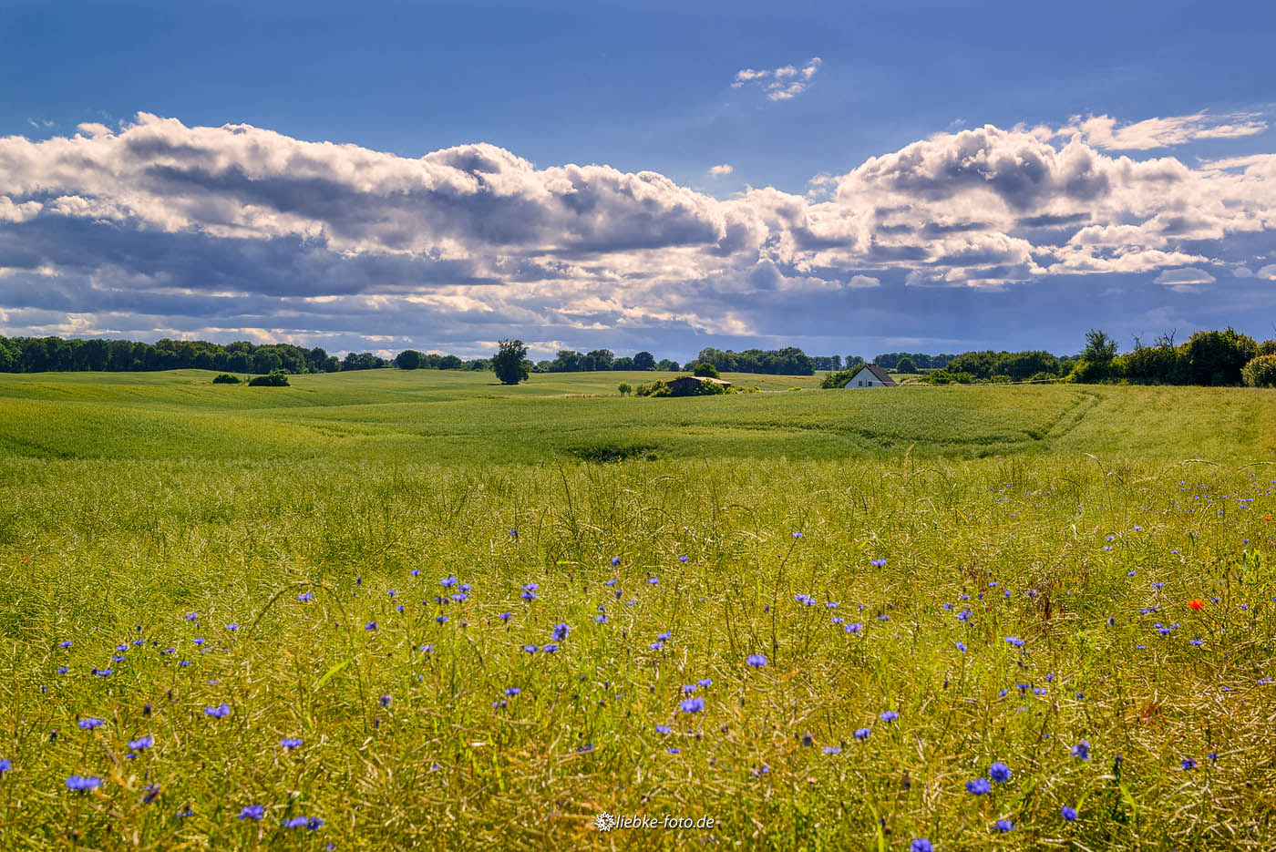 """Uckermark, die """"Toscana des Nordens"""""""
