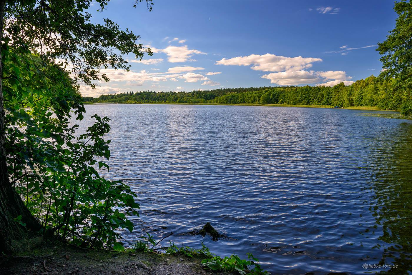 Der Bruchsee bei Templin, der in den Templiner See mündet.
