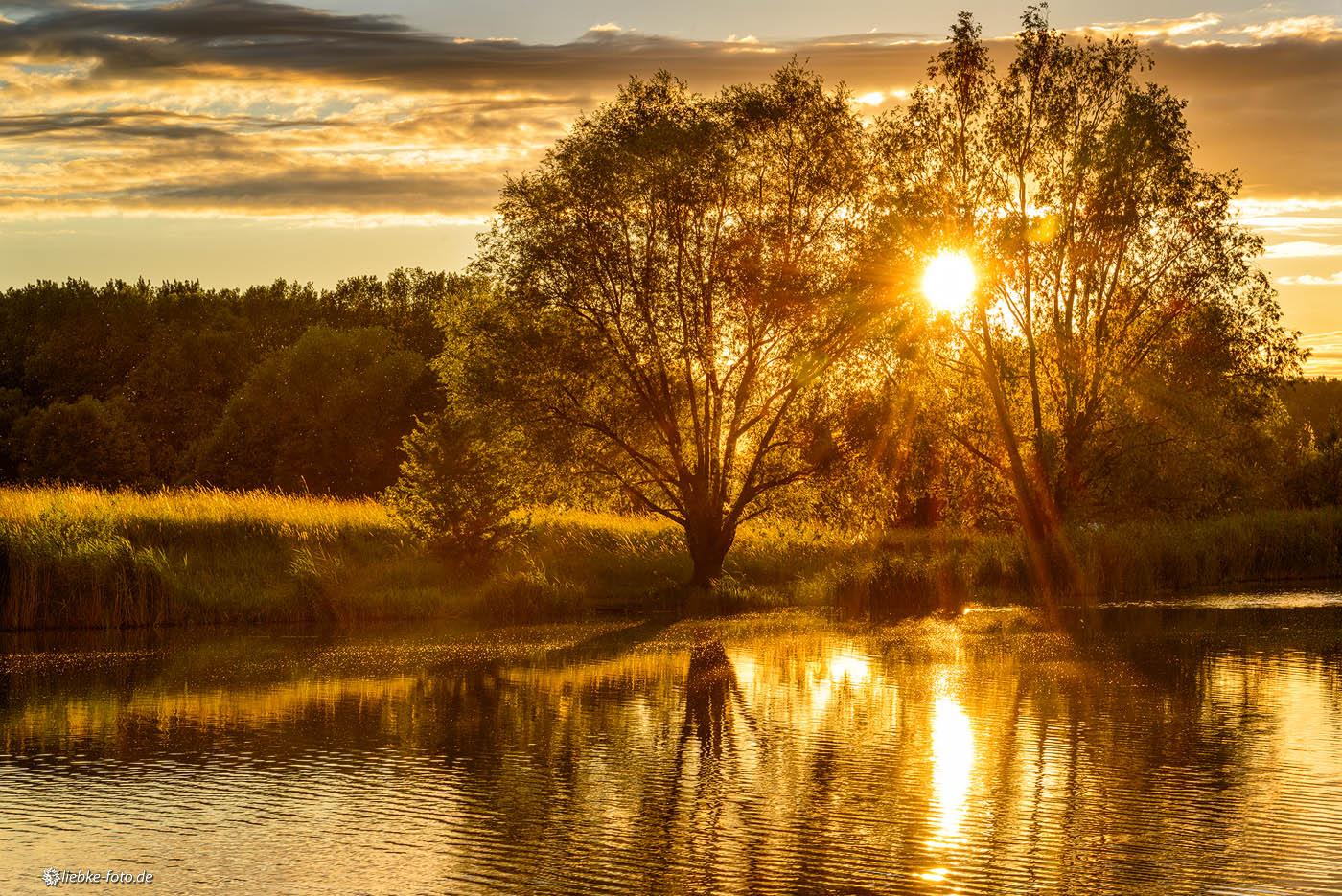 Wunderbare Lichtspiele der Abendsonne
