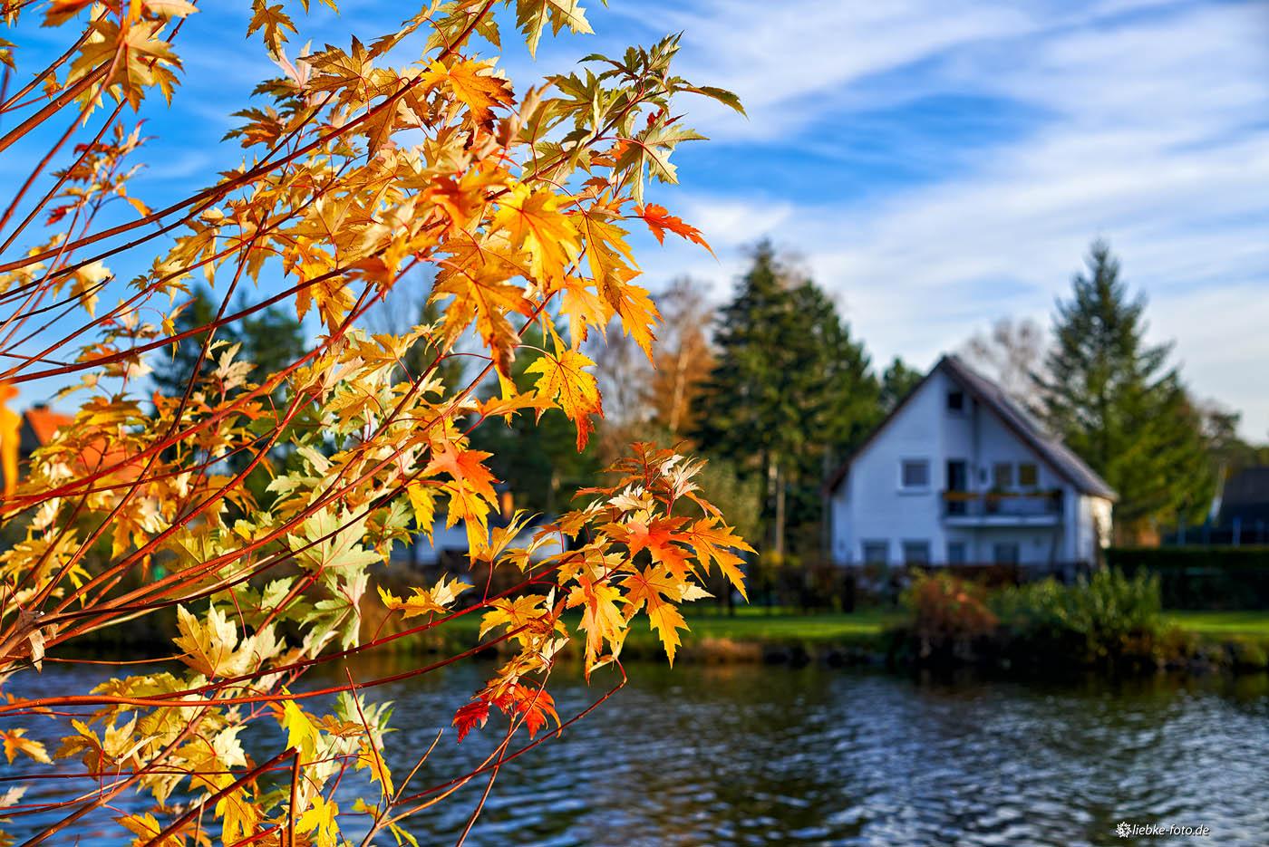 Herbst am Oder-Havel-Kanal Oranienburg
