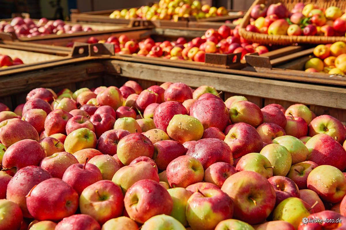 Leckere, saftige und frische Äpfel aus der Region