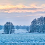 Morgens vor Glienicke, Nikon D800, RAW