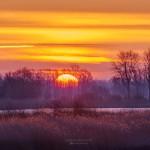 Sonnenaufgang in der Teichlandschaft Linum, Brandenburg