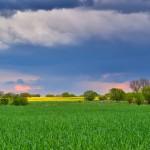 Frühlingsfarben unter märkischem Himmel
