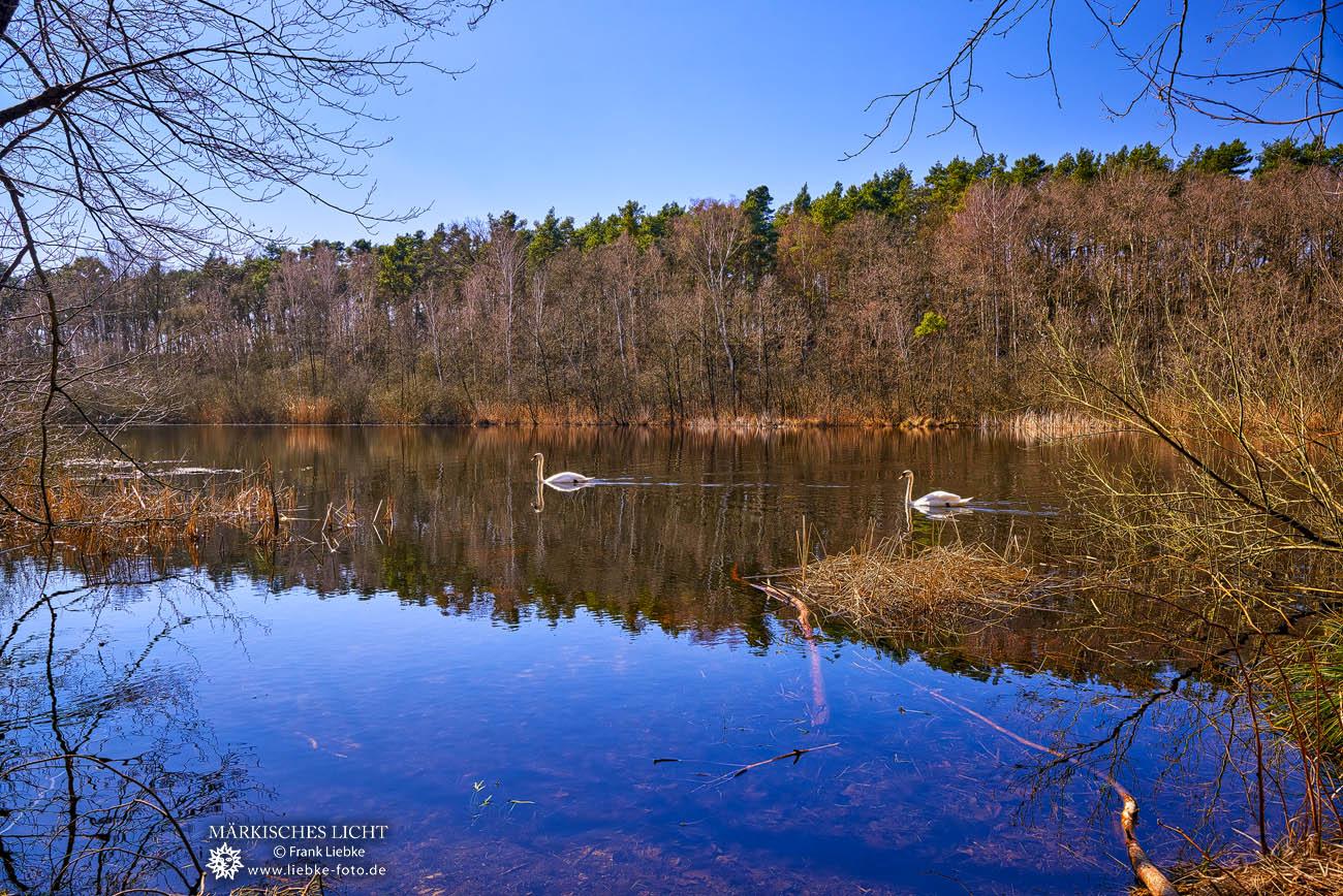 """Der See im Naturschutzgebiet """"Sutschketal"""""""