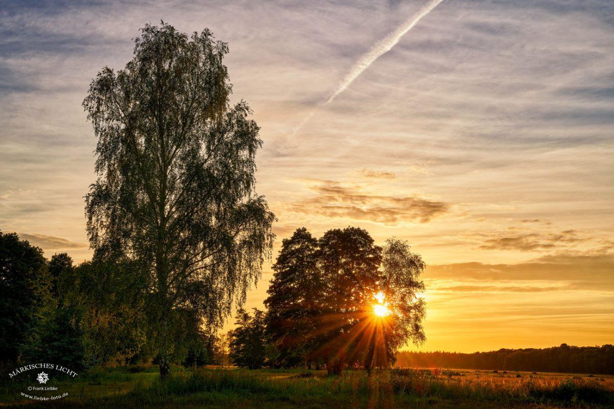 Abends im Kremmener Land bei Hohenbruch, Nikon Z7, Nikkor Z 24-70/4S