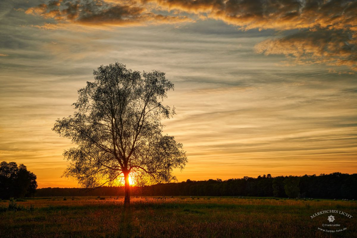 Abends in Hohenbruch