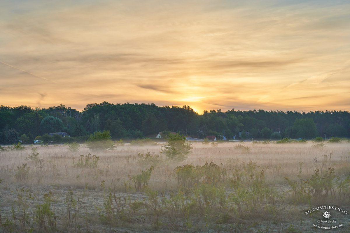 Das Dörfchen Schwante im Morgennebel Nikkor Z 70-200/2,8 VR S