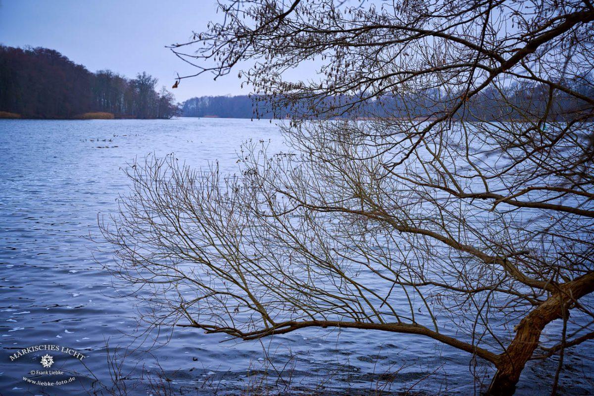 """Blick von der """"Liebesinsel"""" zum Lehnitzsee"""