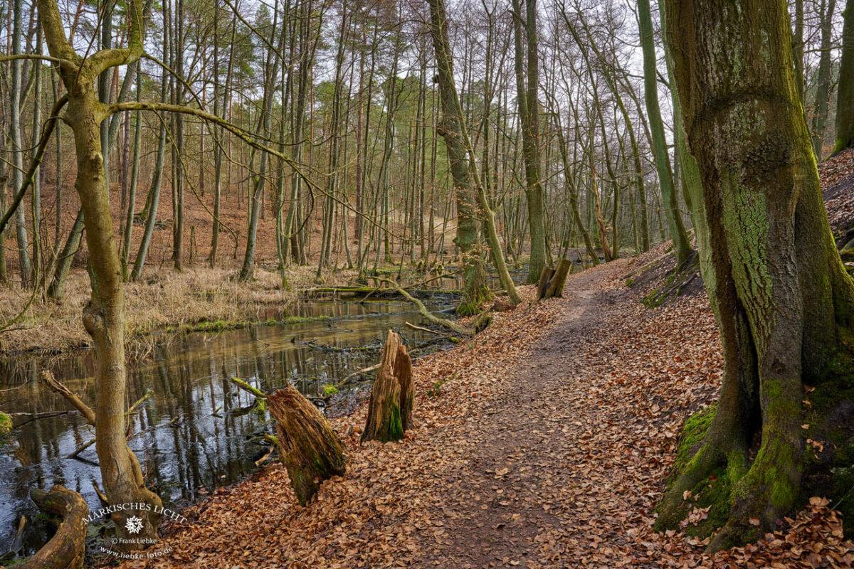 Das Briesetal im Naturpark Barnim, Wanderweg an der Briese