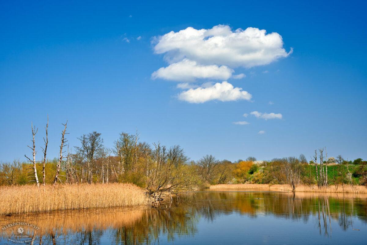 Am Köppchensee im Naturpark Barnim