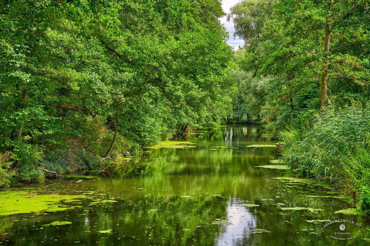 Still und gemächlich fließt die Löcknitz am Park der Burg dahin