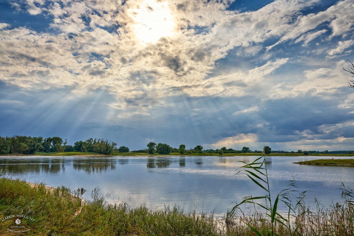 Die Lenzerwische, an der Elbe