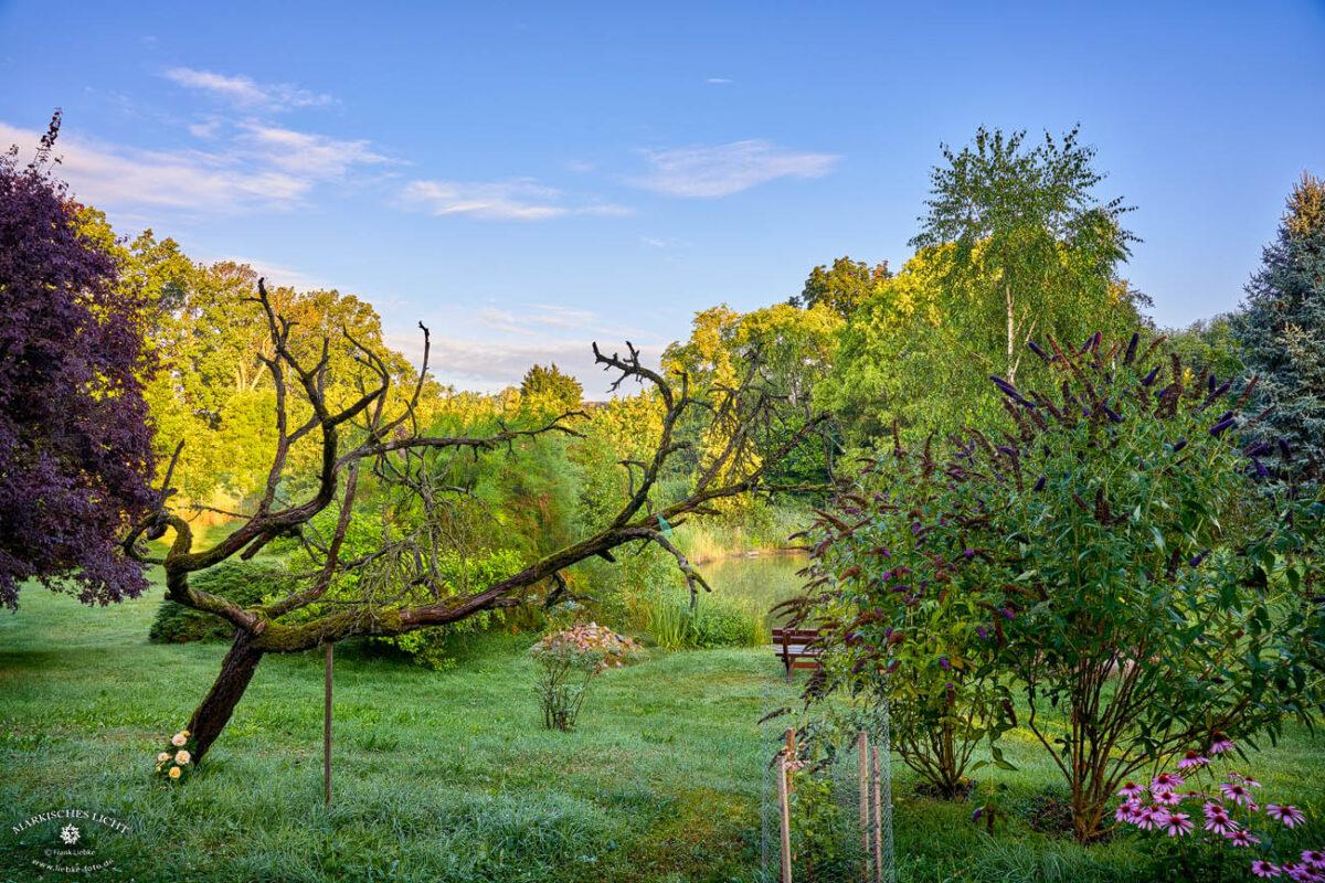 Landhaus Elbeflair in der Lenzerwische, Morgenausblick aus meinem Zimmer. Schon das weckt die Lebensgeister und den Elan