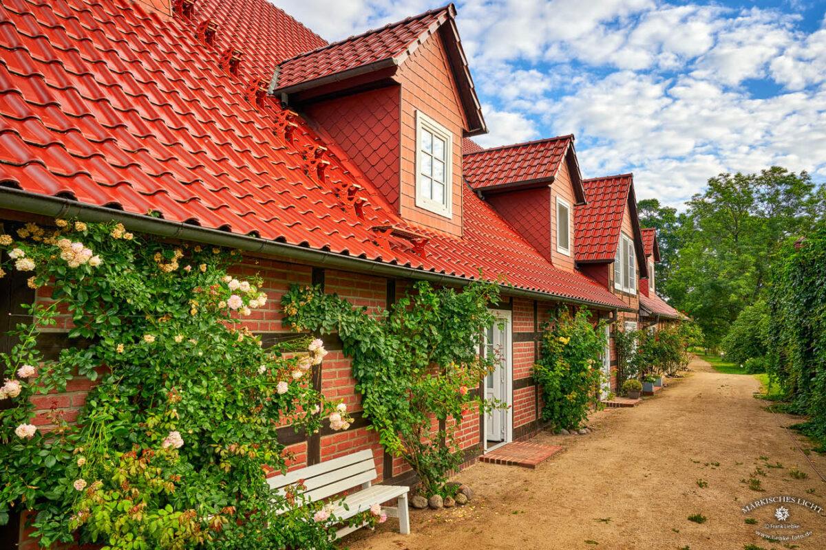 Landhaus Elbeflair in der Lenzerwische, Hier fühlen sich nicht nur die Menschen wohl, naturnah ist die Einladung für Bienen, Grashüpfer und Co.