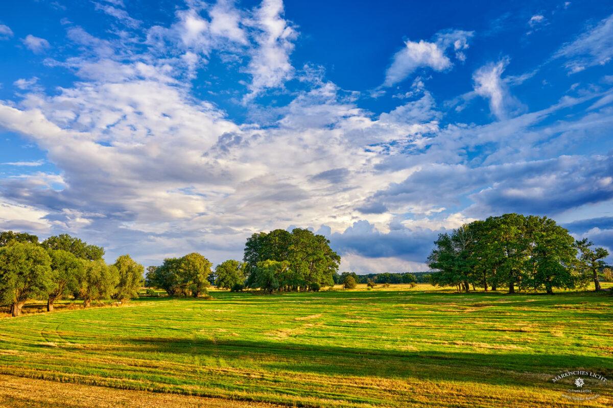 Landhaus Elbeflair in der Lenzerwische, Gleich hinterm Deich eine märchenhafte Landschaft