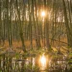 Sutschketal Naturschutzgebiet