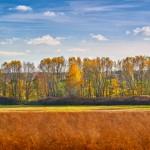 Beelitzer Land
