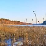 Am Frauensee